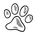 puppy dog paw, puppy dogs training 101